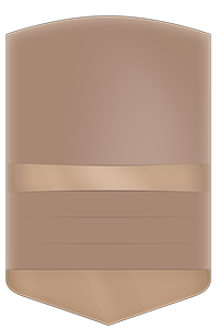 BROWN  bronzebronze