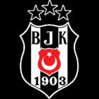 badge of Beşiktaş JK