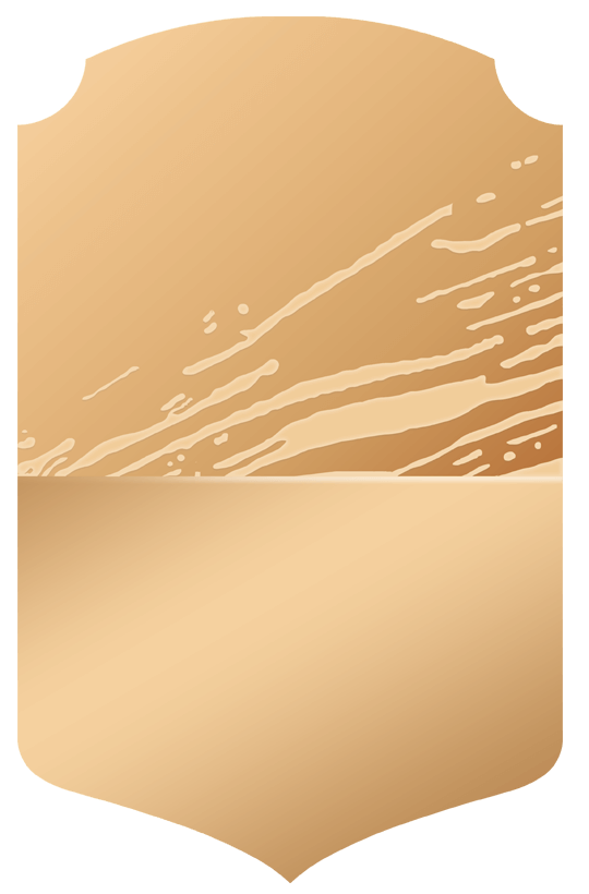 Burgoa  bronzerare_bronze