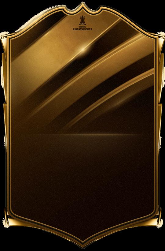 Armani  goldlibertadores_special