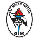 badge of Gaz Metan Mediaş