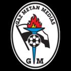 badge of Gaz Metan Mediaş