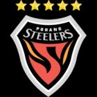 badge of Pohang Steelers