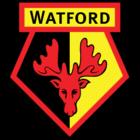 badge of Watford